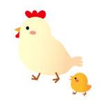 鶏の親子イラスト
